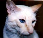 Miluju jeho krásné modré oči!