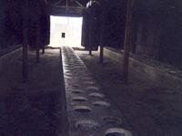 toalety v táboře