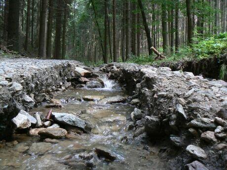 Cesta po povodni (Doubravice)