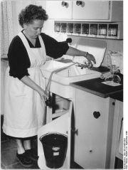 Žena v domácnosti