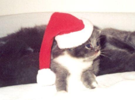 Vánoce 2002