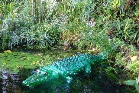 PET krokodýl
