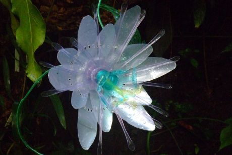PET květ