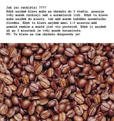 hlava v kave