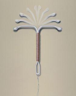 nitroděložní tělísko