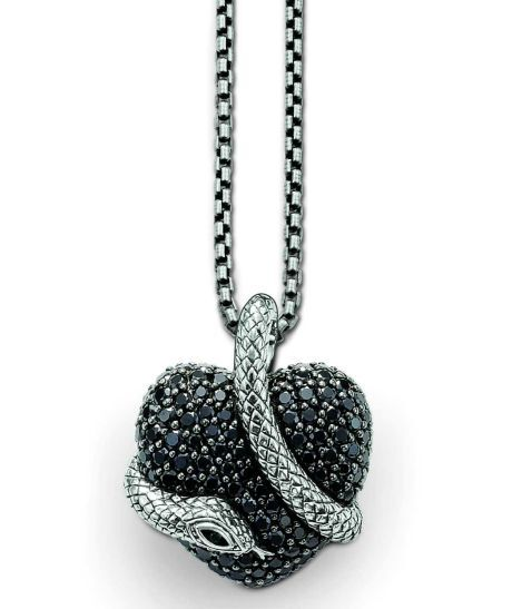 Had na srdci