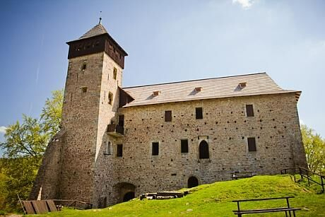 hrad_Litice