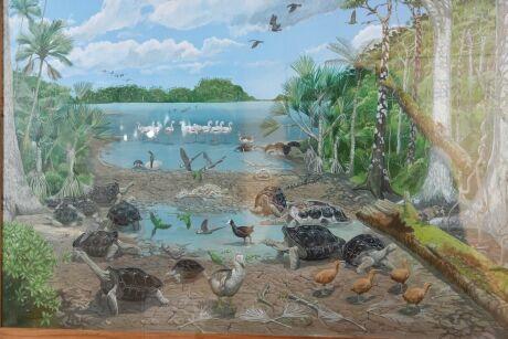dobový obrázek fauny