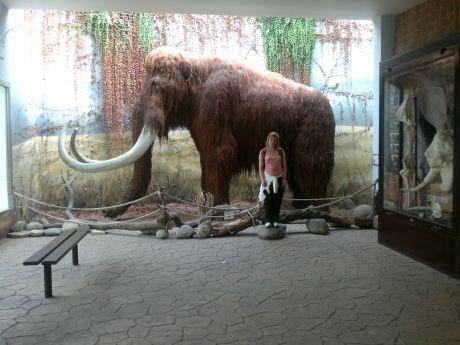 pavla s mamutem