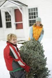 Popis: C:\Documents and Settings\vaclav.prchlik\Desktop\Jak vytvořit vánoční atmosféru\image1_zdroj OBI.jpg