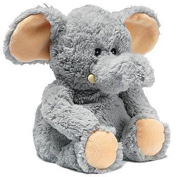 slon od Albi