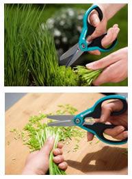 Nůžky Gardena SchnippSchnapp