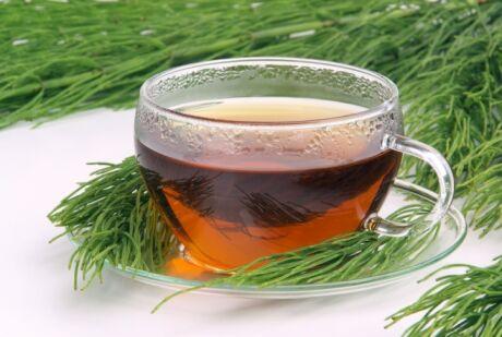 čaj z přesličky rolní