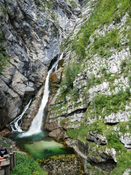 slovinskojedna