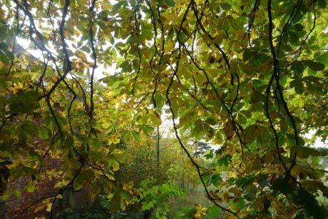 865046926c3 ŽENA-IN - Nejkrásnější období je patrně podzim