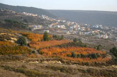 Jitka Miškářová, Izrael