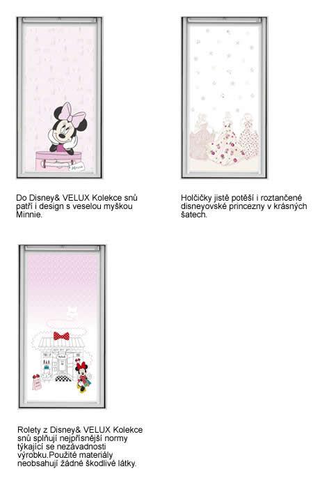 Disney & VELUX