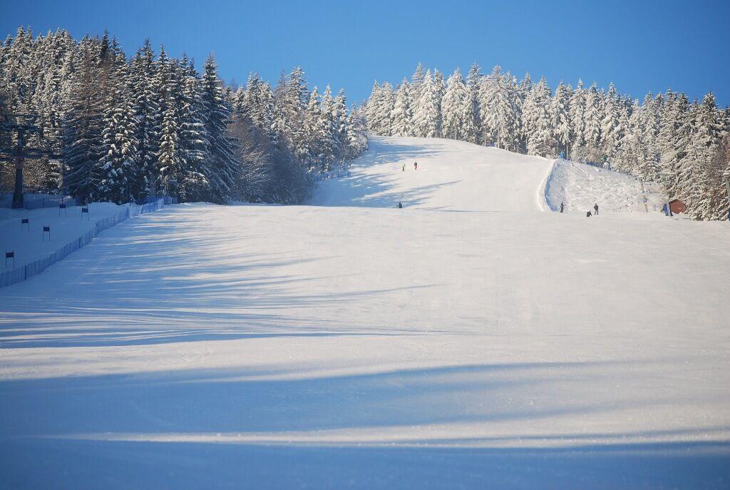 Skiare�l Herl�kovice - Bub�kov