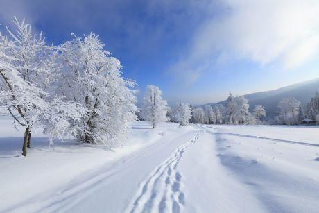 zima  33