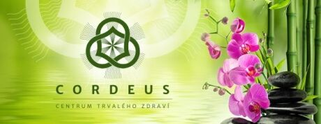 www.cordeus.cz