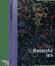 Obálka knihy Ratajský les