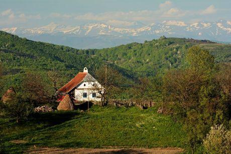 Rovensko