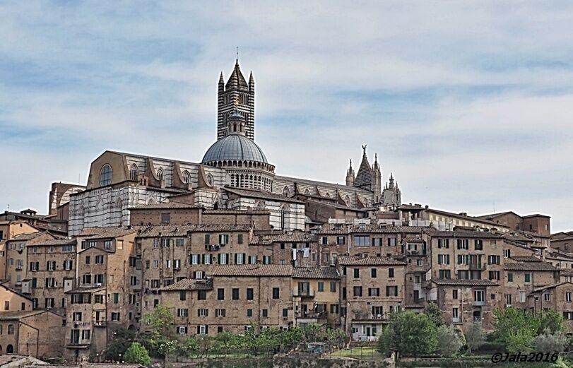 Sienský dóm nad městem