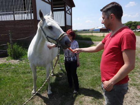 na koních