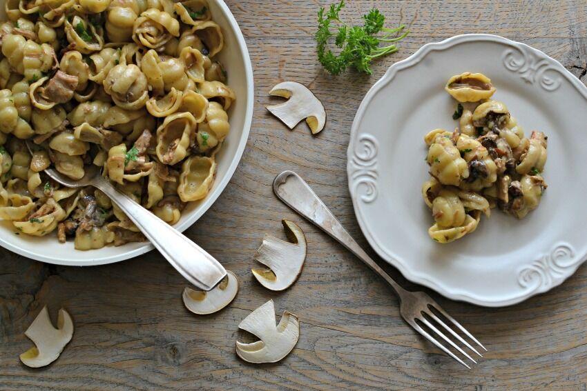 t�stoviny s houbami