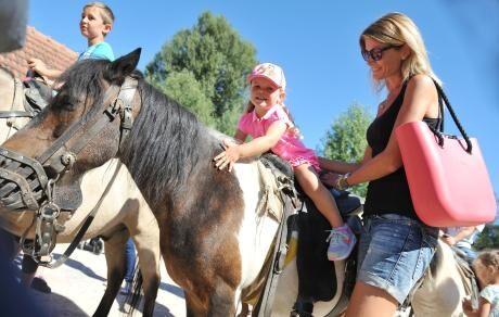 s koněm