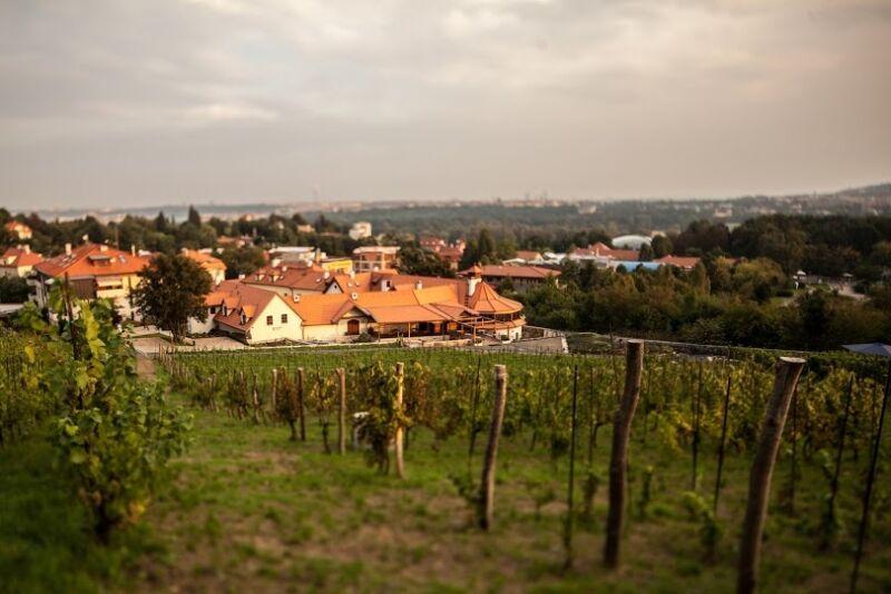 www.salabka.cz