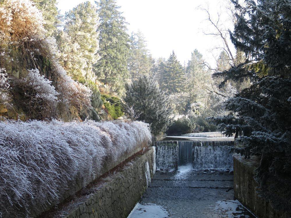 Ledové království v Průhonickém parku