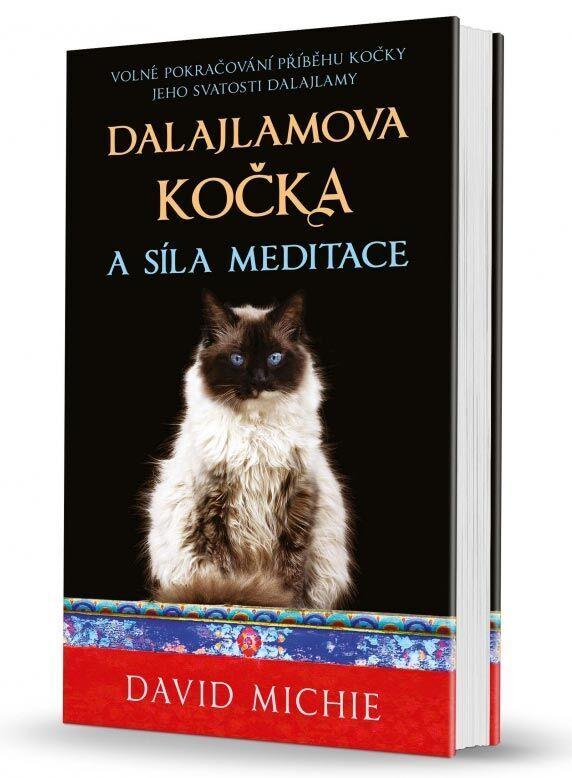 Dalajlamova kočka a síla meditace, Synergie