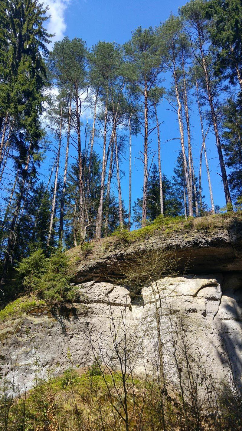 Jarní výlet: Kokořínská divočina