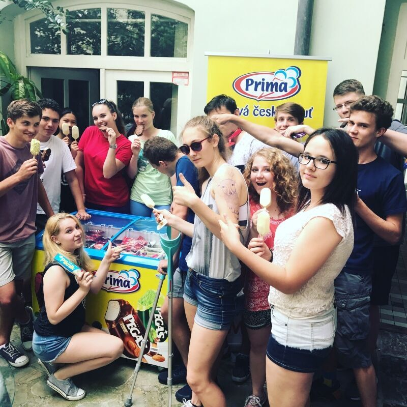 zmrzliny Prima
