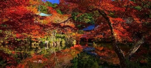 Japonský podzim