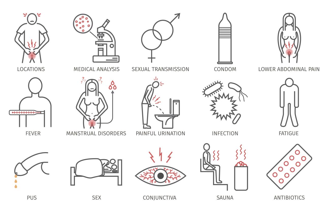 Diagram anální sex