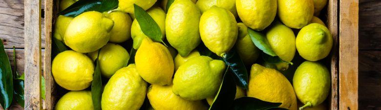 citron-velky.jpg